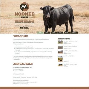 Noonee Angus Website